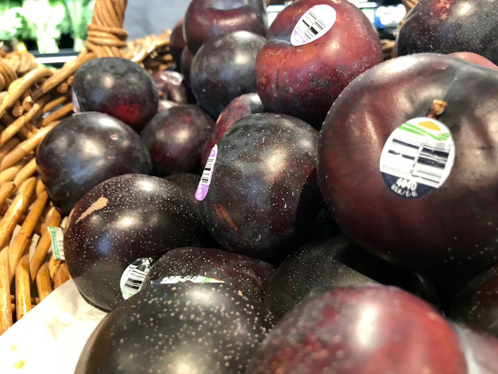 Foodies_Markets_South_Boston28